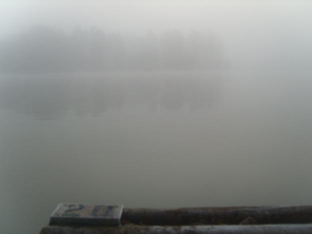 Fog At No 20