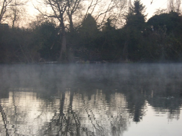 Morning Mist width=