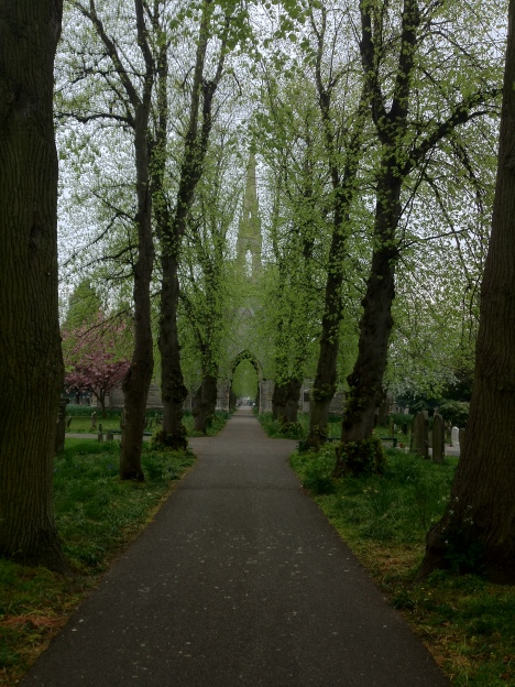 Peaceful Pathway