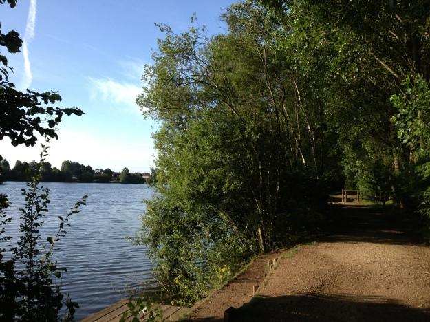 Pathway Along The Lake
