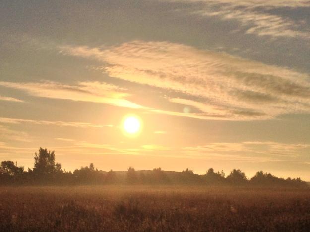 Morning Glows