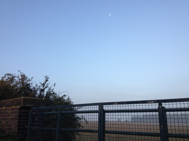 7.30am - Moon In Clear Blue