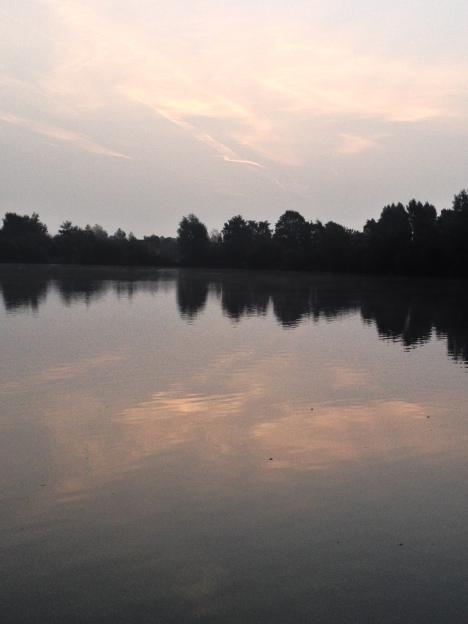 Subtle Reflections