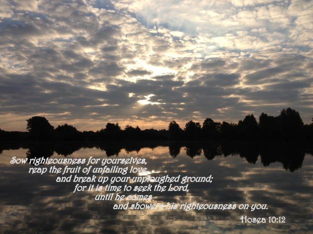 Hosea 10:12