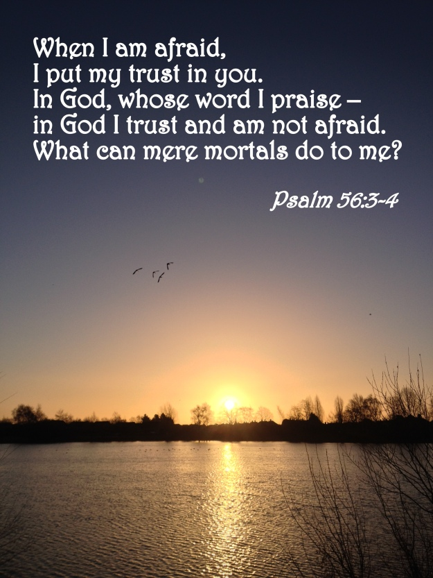 Psalm 56:3-4