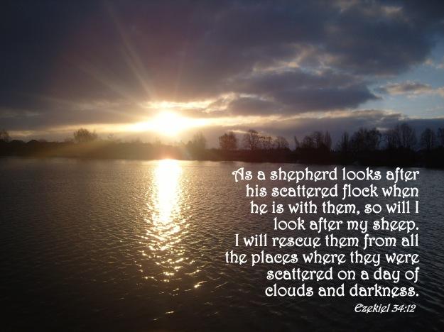 Ezekiel 34:12