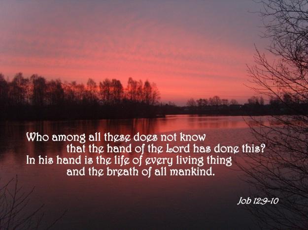 Job 12:9-10