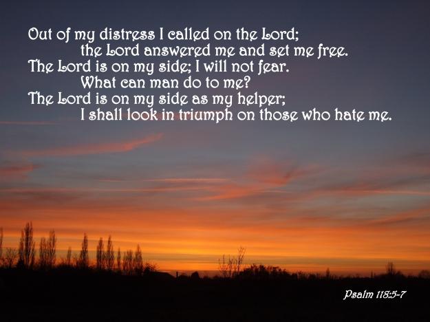 Psalm 118:5-7