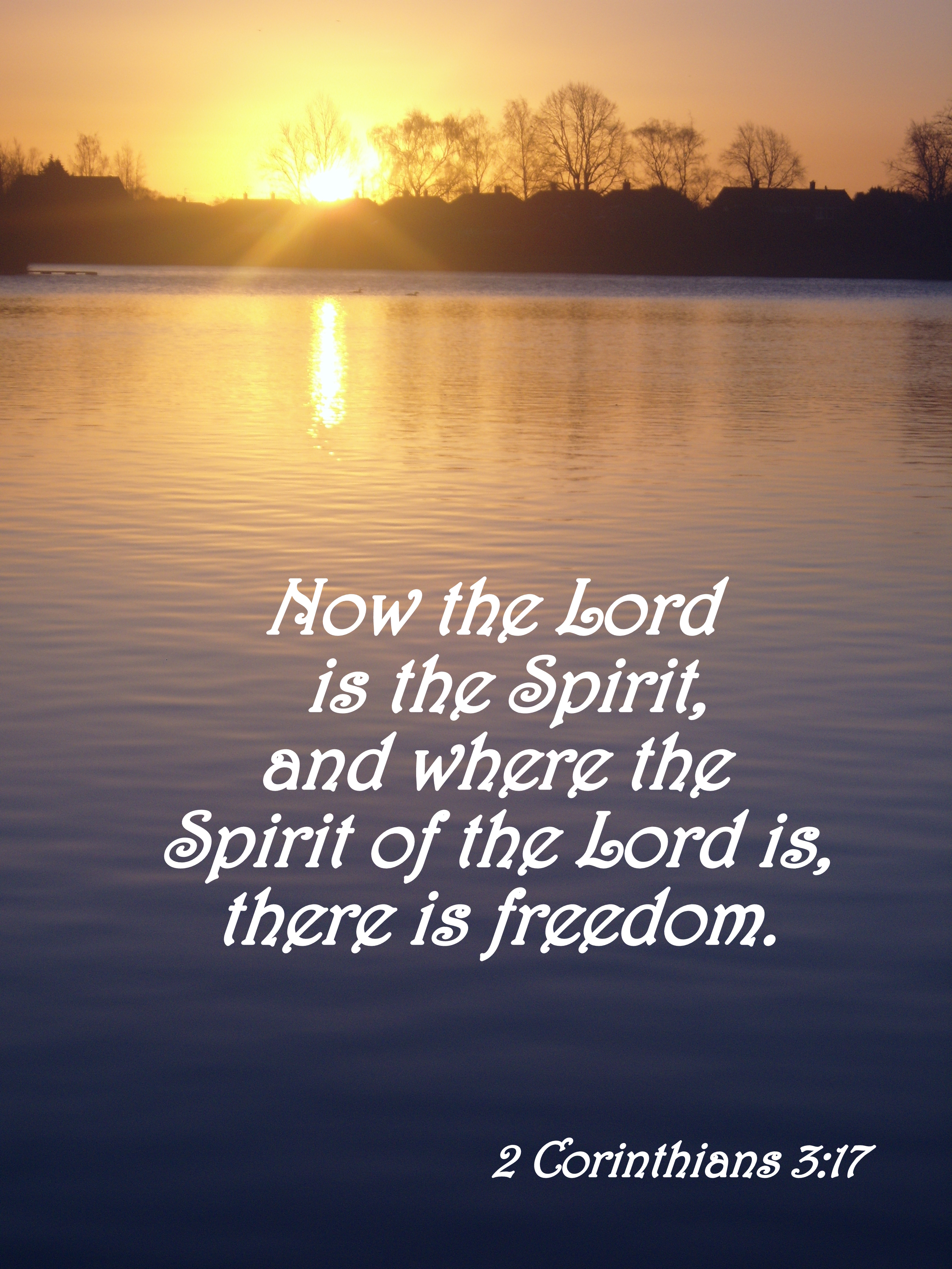 the day freedom came to me In the storybook version most of us learned in school, the pilgrims came to america aboard the mayflower in search of religious freedom in 1620 the puritans soon followed, for the same reason.