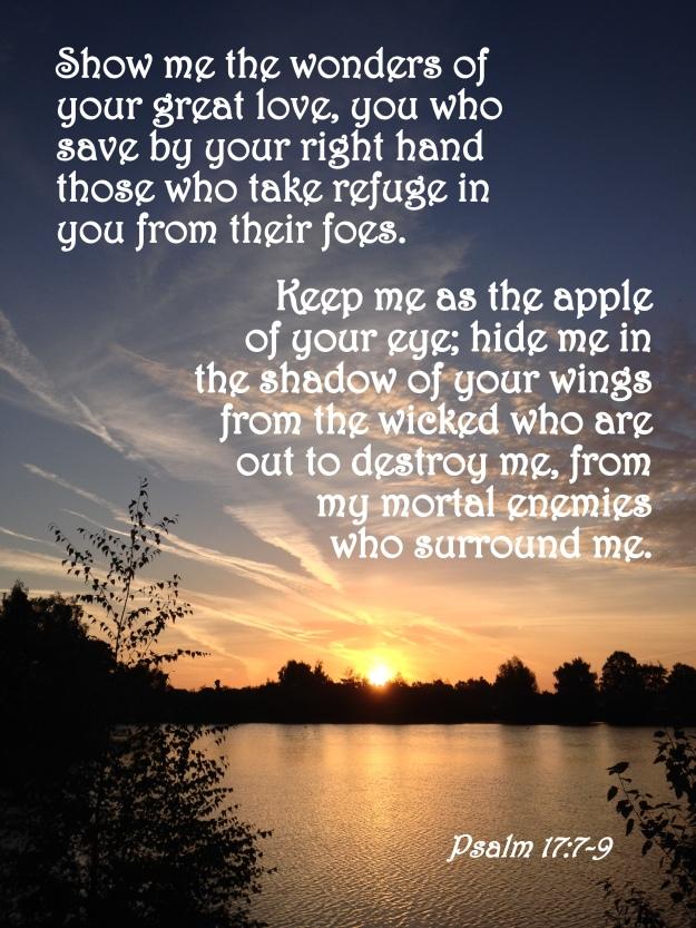 Psalm 17:7-9