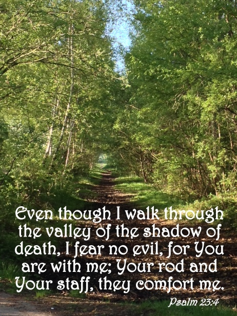 Image result for psalm 23 4