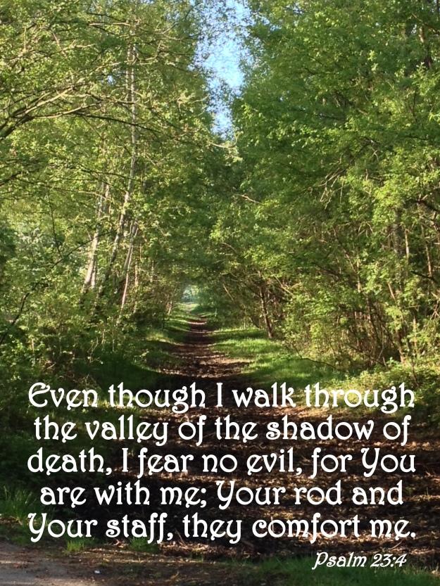 Psalm 23:4