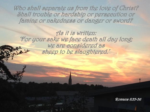 Romans 8:35-36