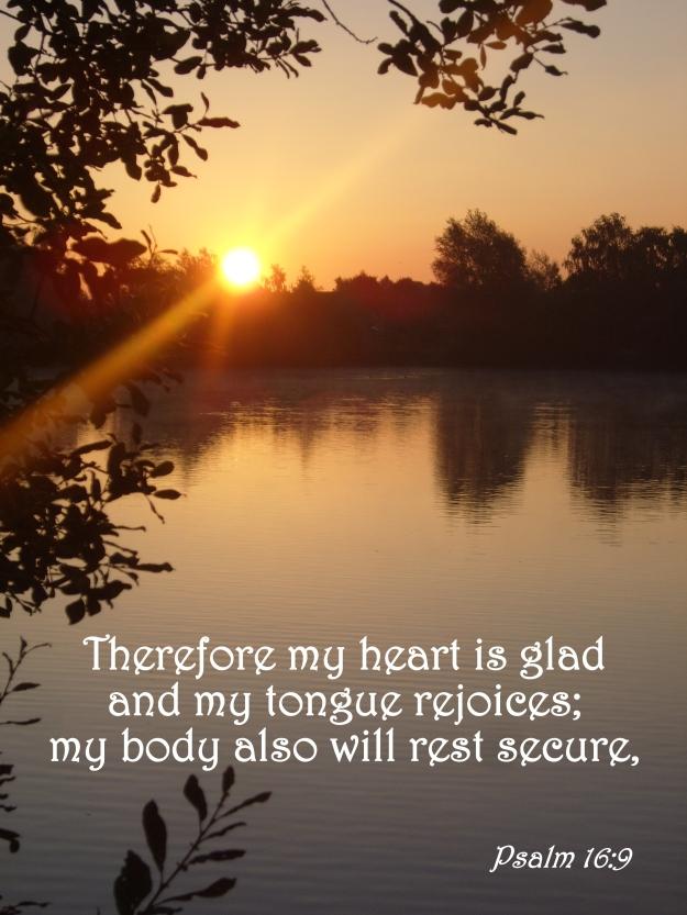 Psalm 16:9