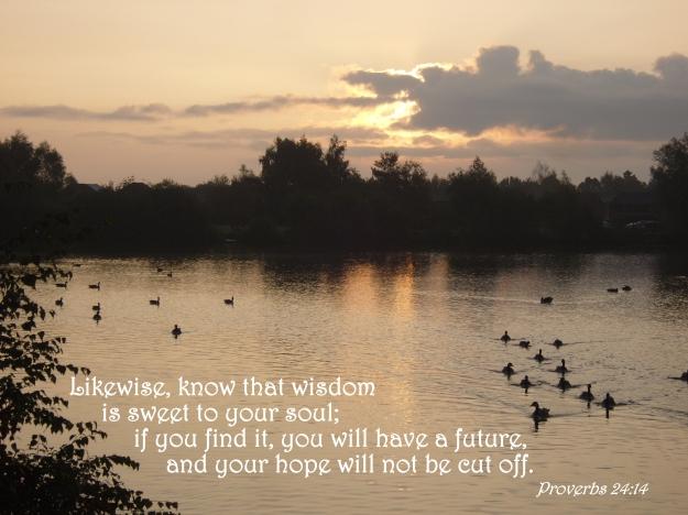 Proverbs 24:14