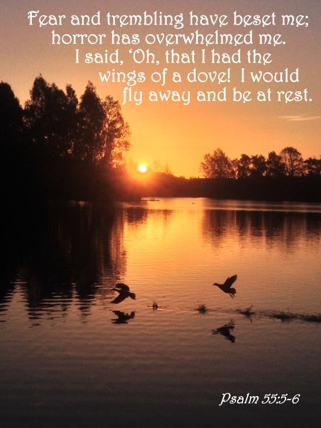 Psalm 55:5-6