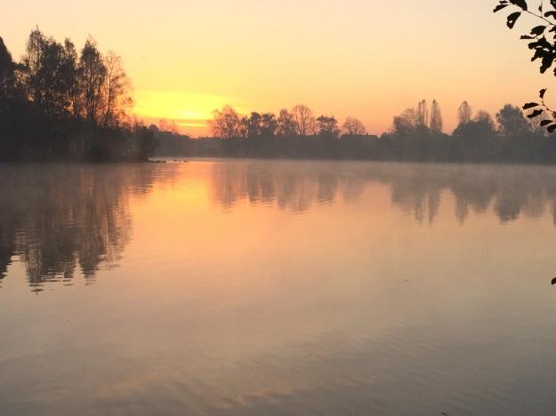 Rising Morning