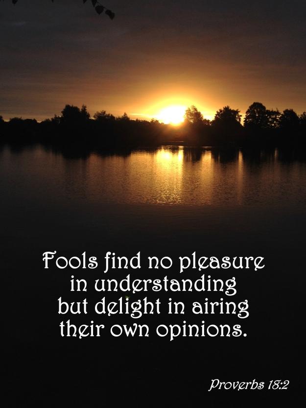 Proverbs 18:2