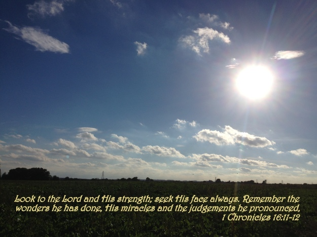 1 Chronicles 16:11-12
