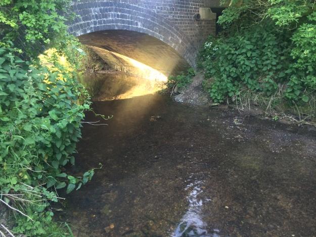 Light Beneath The Bridge