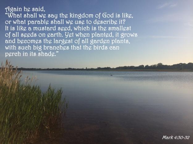 Mark 4:30-32