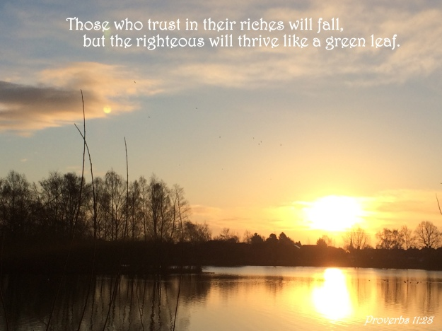 Proverbs 11:28