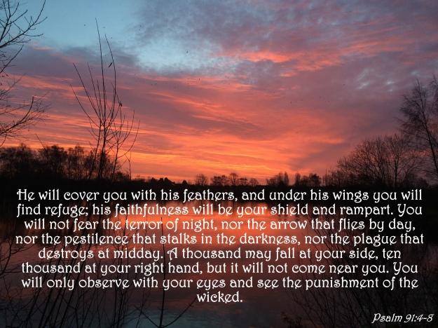 Psalm 91:4-8