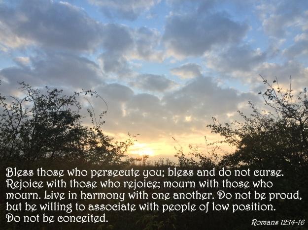 Romans 12:14-16