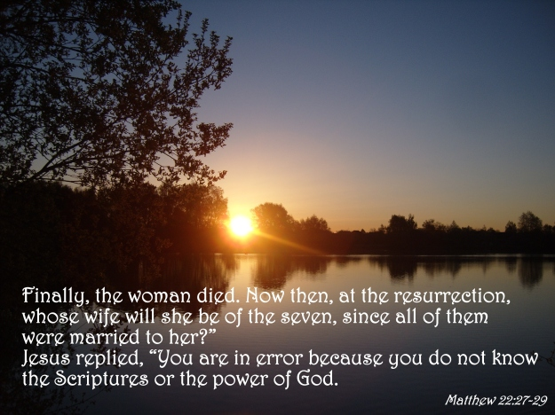 Matthew 22:27-29