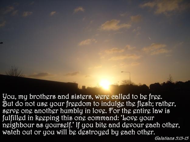 Galatians 5:13-15