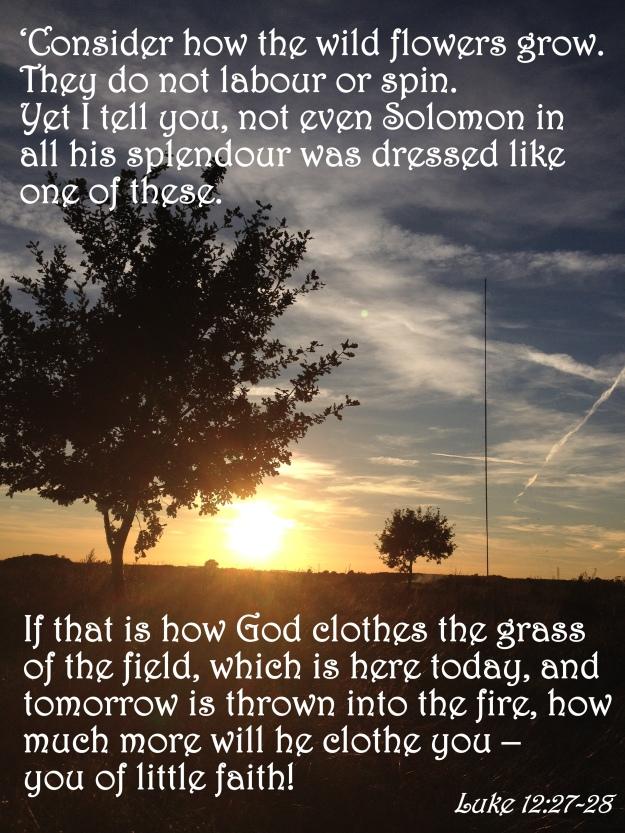 Luke 12:27-28