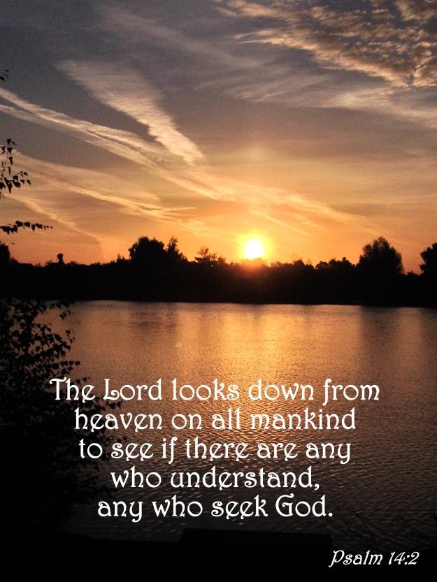 Psalm 14:2