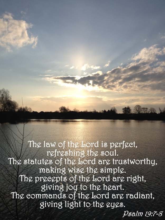 Psalm 19:7-8