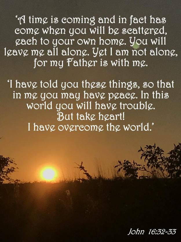 John 16:32-33
