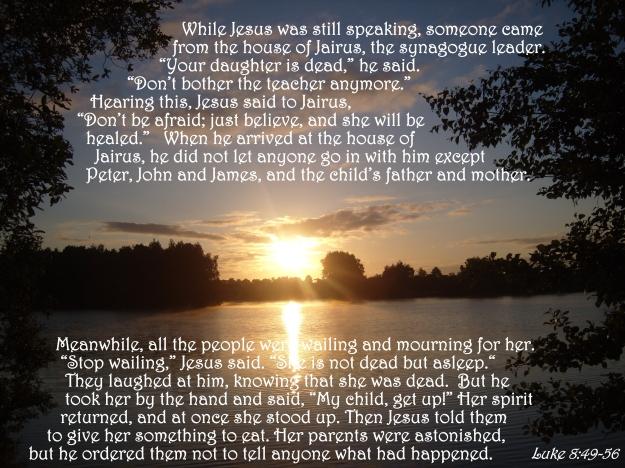 Luke 8:49-56