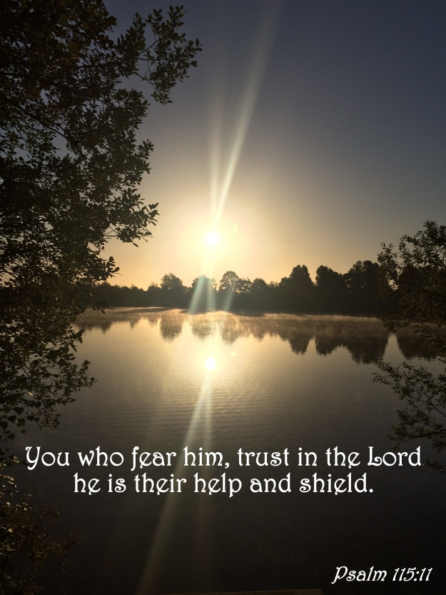 Psalm 115:11