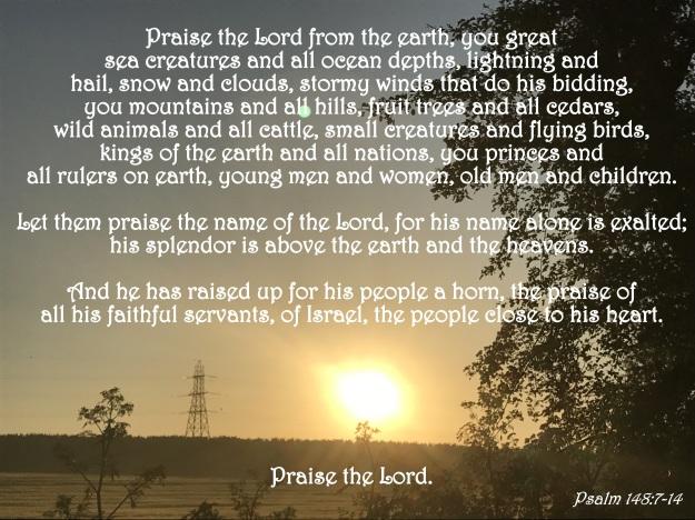 Psalm 148:7-14