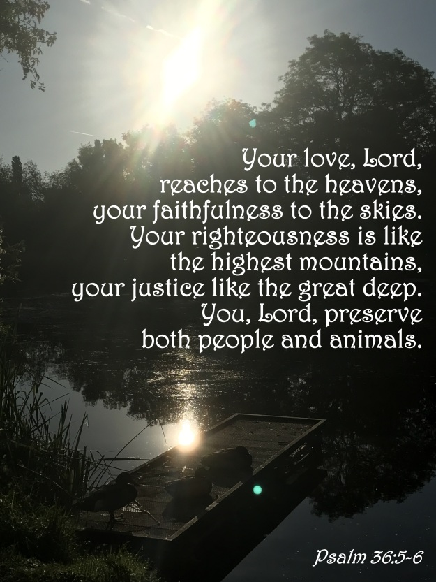 Psalm 36:5-6