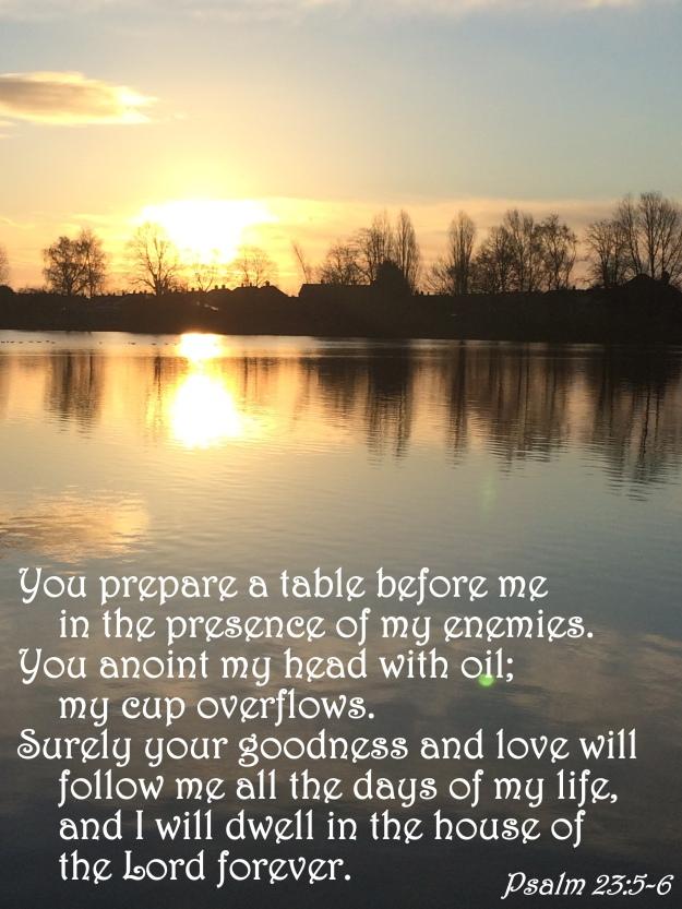 Psalm 23:5-6
