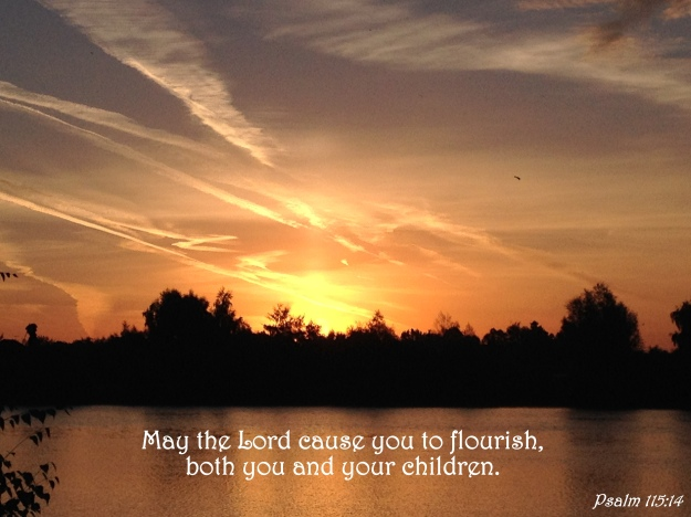 Psalm 115:14