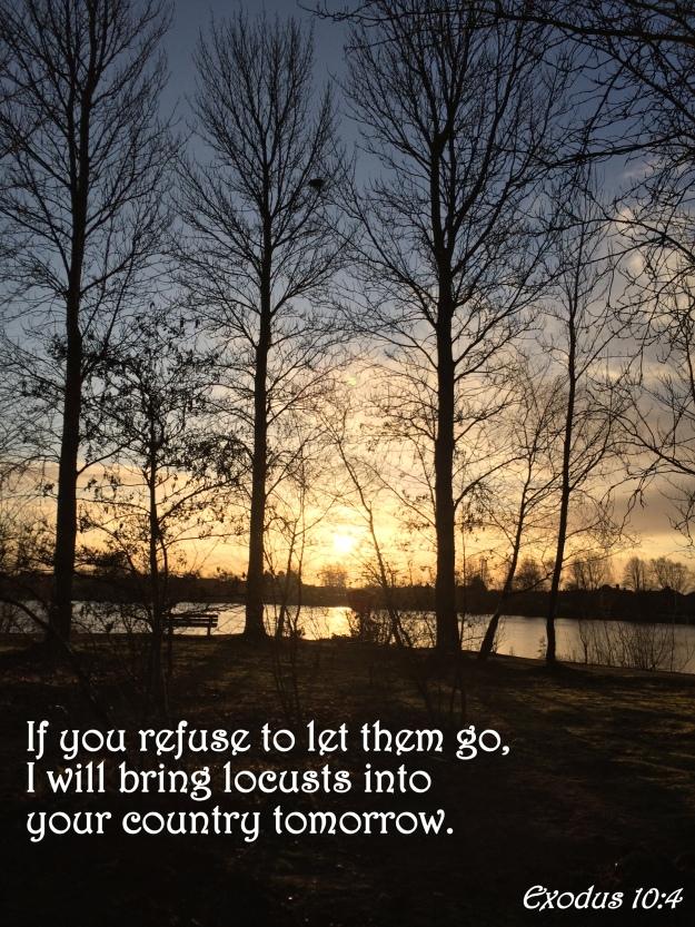 Exodus 10:4