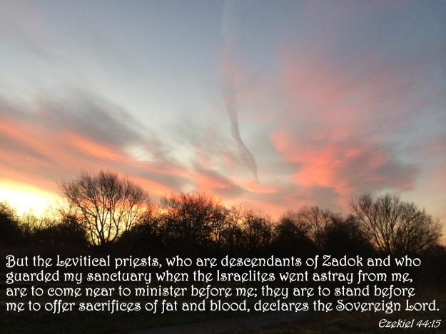 Ezekiel 44:15