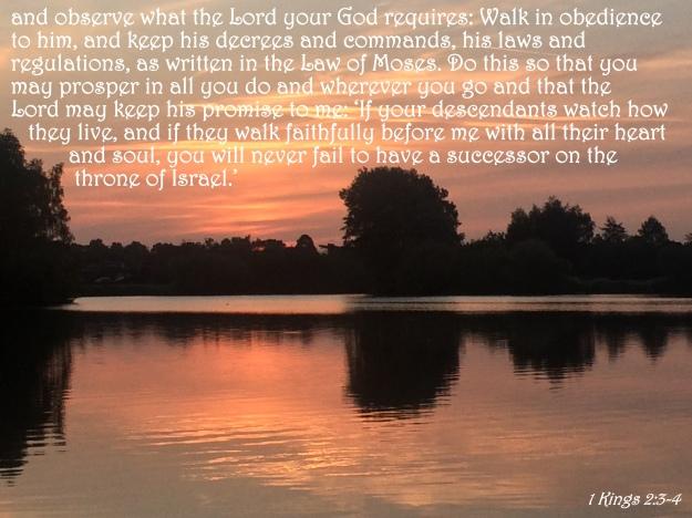 1 Kings 2:3-4