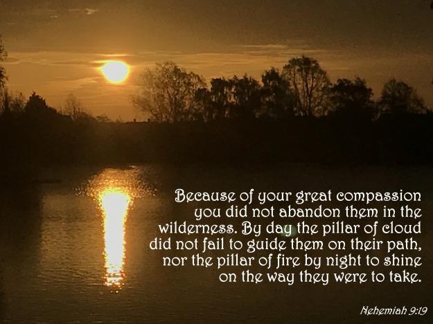 Nehemiah 9:19