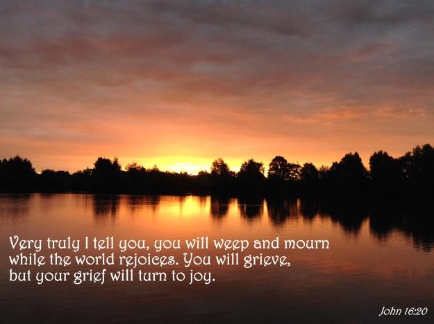 John 16:20