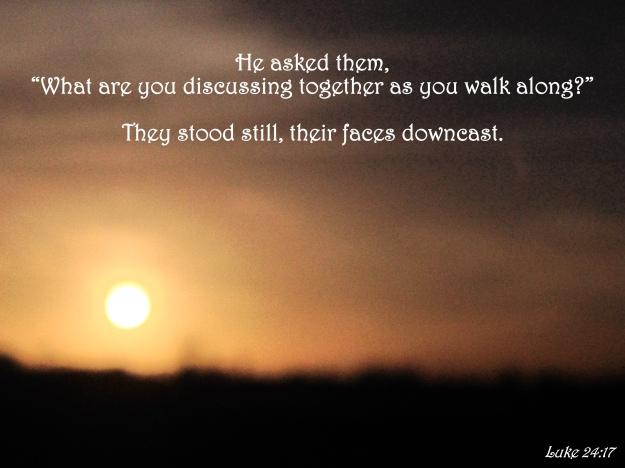 Luke 24:17