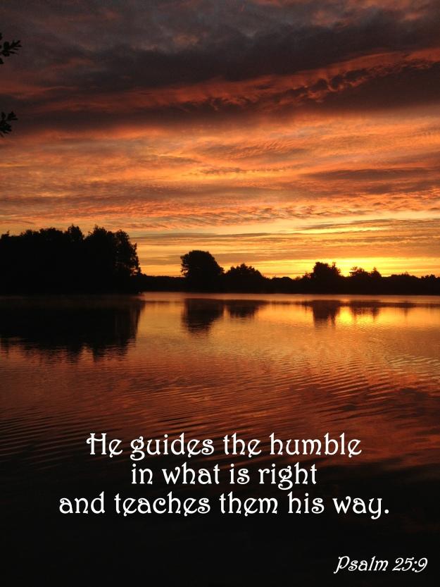 Psalm 25:9