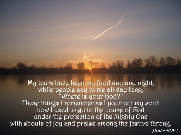 Psalm 42:3-4