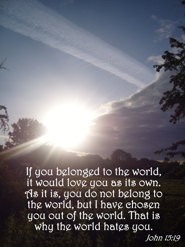 John 15:19