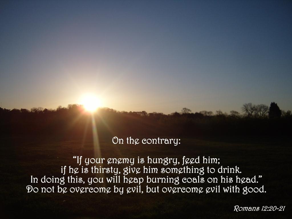 Romans 12:20-21